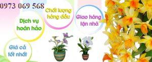 Shop hoa tươi Châu Đốc