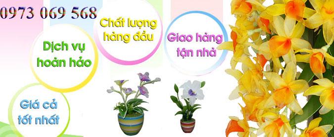 Shop hoa tươi Quận Ba Đình