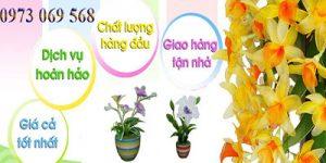 Shop hoa tươi Thị Trấn Long Thành